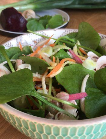 Salade folle de pourpier et légumes variés